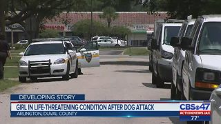 Florida girl, 6, in life-threatening condition following dog attack