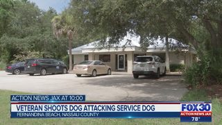 Veteran shoots dog attacking service dog