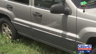 Several cars keyed by vandals