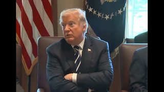 Trump faces more domestic flak over tariffs, trade policies