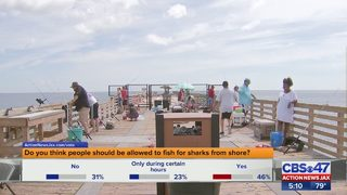 FWC considering limiting shark fishing from shore at Jacksonville Beach