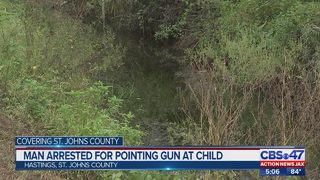 Deputies: Hastings man pointed gun at child