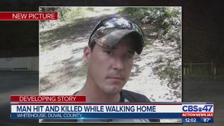 Man hit and killed while walking home
