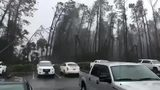 Trees snap as Hurricane Michael makes landfall