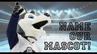 Jacksonville Icemen need your help naming their new mascot