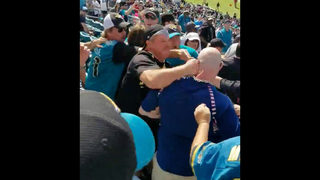 Jaguars release statement after viral video shows fan being punched