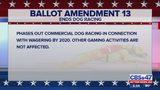 Explainer: Amendment 13