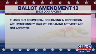 Florida Election 2018: The amendments, explained
