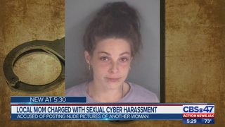 Orange Park woman accused of sexually cyber harassing woman