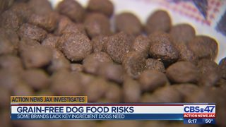 Grain-free dog food risks
