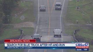 Search for blue truck after hit-and-run