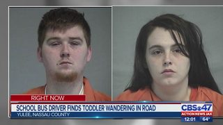 Parents of toddler found wandering alone arrested, Nassau deputies say