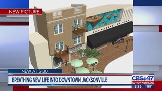 Jacksonville bookstore owner attempts to revitalize downtown