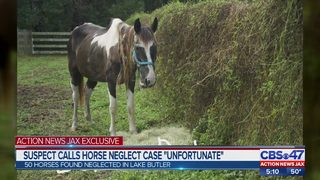 3 people arrested on suspicion of animal cruelty following a monthslong horse neglect probe