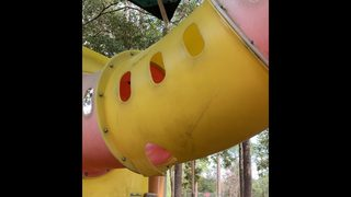 PHOTOS: Action News Jax investigates Jacksonville playground conditions, gets results