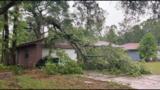 Here's a look at a big tree limb on a home on Jacksonville's Southside.
