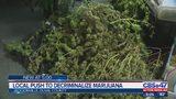 Jacksonville city councilman files bill to decriminalize small amounts of marijuana