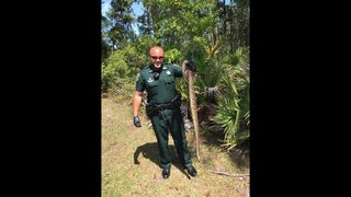 NOPE: St. Johns County deputy responds to call for