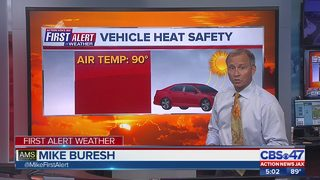 Vehicle heat safety following hot car death
