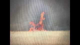 PHOTOS: Officials remind drivers near I-95 to be cautious due to Yellow Bluff wildfire