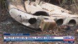Small plane crash on St. Simons Island kills pilot