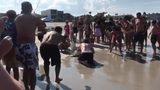 Fisherman released blacktip shark in Atlantic Beach