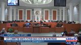 City committee wants to push back vote on tax increase