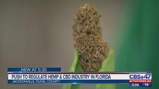 Use CBD? This bill would regulate Florida hemp industry