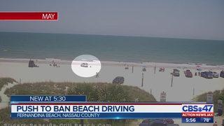 Push to ban beach driving