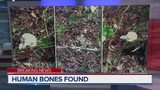 Man comes across human remains while plowing land in Jacksonville