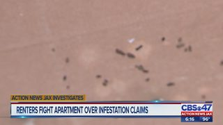 Renters fight apartment over infestation claims