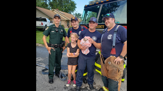 Clay County firefighters, deputy rescue kitten