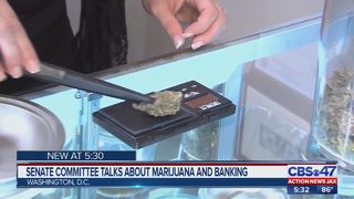 Senate Committee talks about marijuana and banking