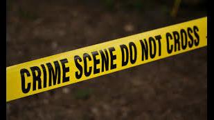 St. Marys Police Department seeking information regarding hit-and-run crash on Miller Street - ActionNewsJax.com